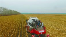 Уборка кукурузы в Белгородской области - в работе ультракомпактный NOVA
